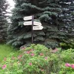 Чем заняться в Переславле-Залесском